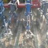 XHR650 witlof rugschoffelmachine 7